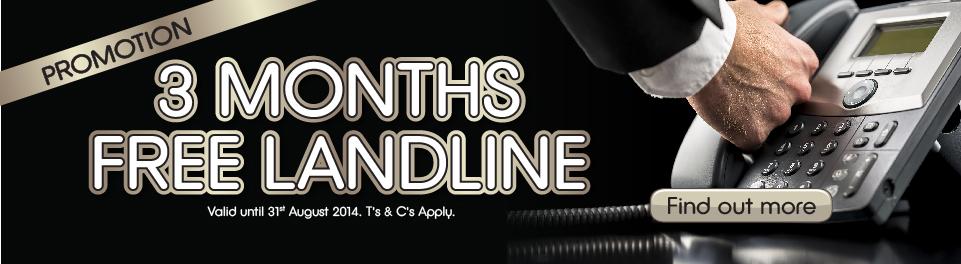Three Months Landline